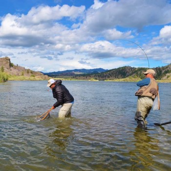 Montana Fly Fishing Company Guided Trips Homepage 600x600