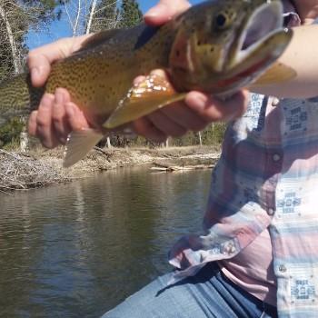 Missoula fly fishing